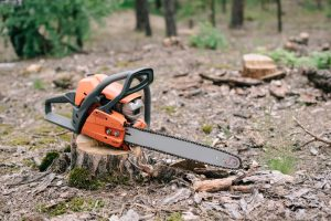 Tree Stump Removal at Big Easy Tree Removal